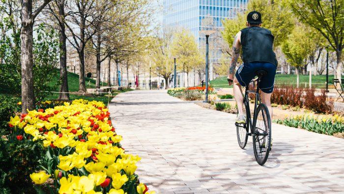 Man Riding Bike in Neighborhood